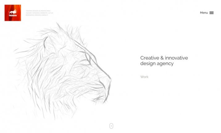 Trionn Design website