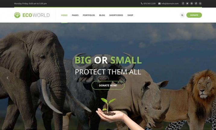 Eco World - Premium WP Theme website