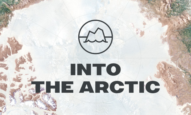 Into The Arctic website