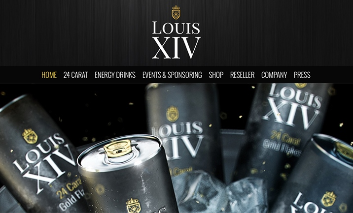 Louis XIV Energy website