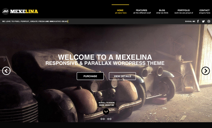 Mexelina Onepage website