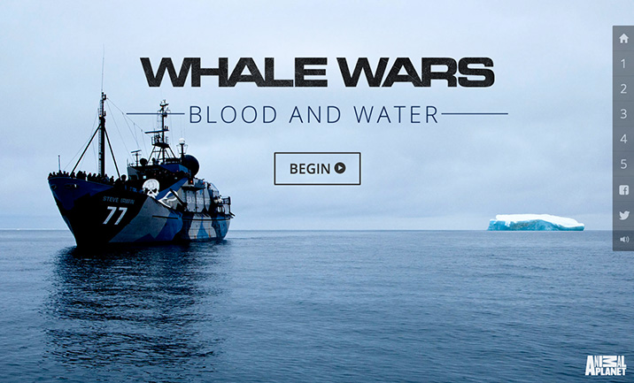 Blood and Water website