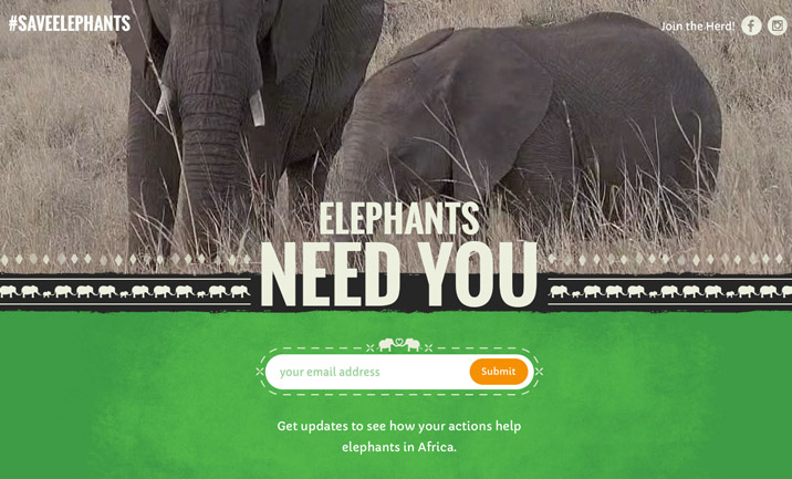 #SaveElephants website