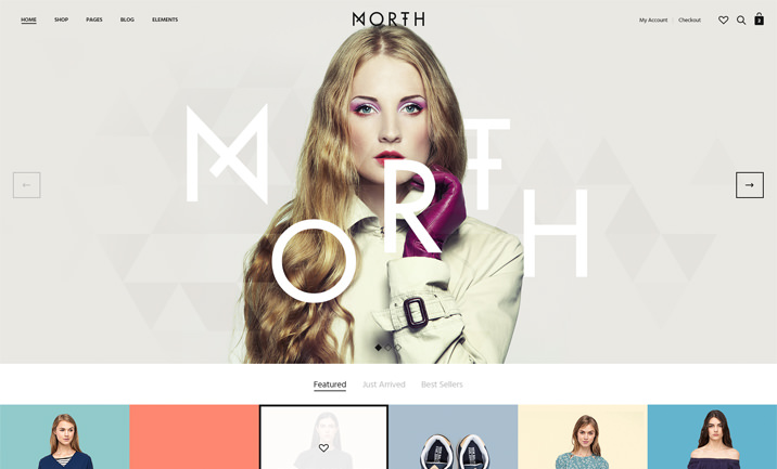 North | Unique E-Commerce Theme website