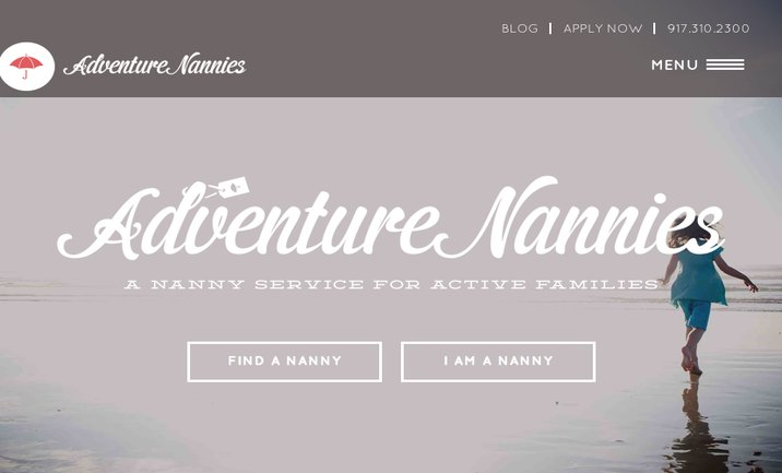 Adventure Nannies website