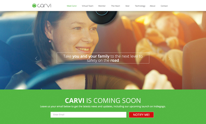 CarVi website
