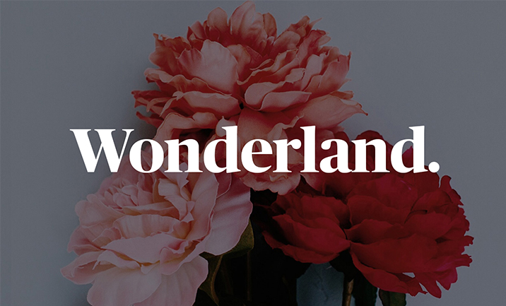 Wonderland Industry website