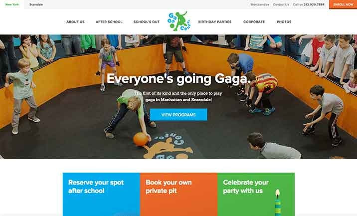The Gaga Center website