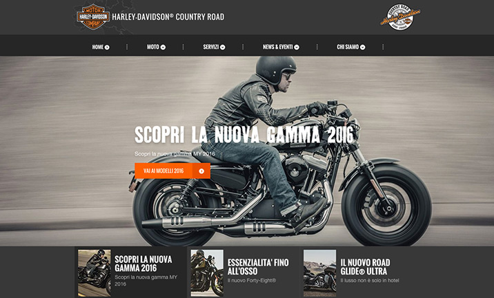 Harley-Davidson® Country Road
