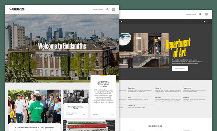 Goldsmiths, University of London website