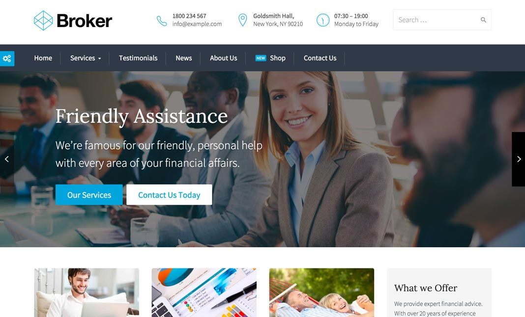 Broker : Wordpress Theme website