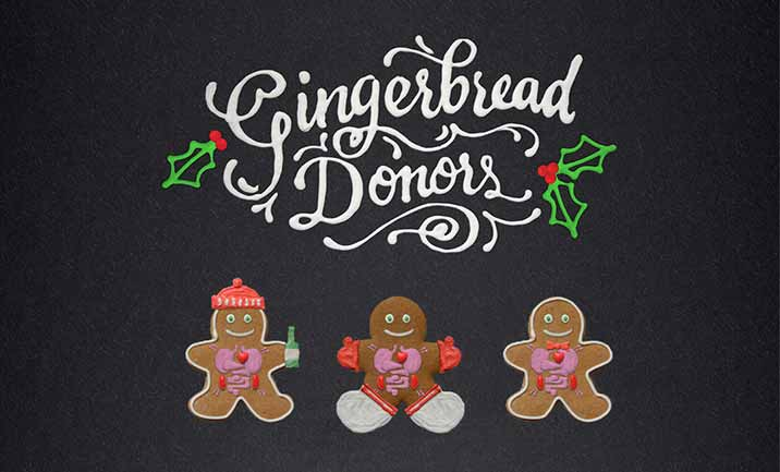 Gingerbread Donors website
