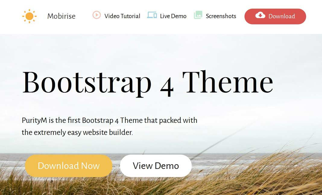 Bootstrap 4 Theme website