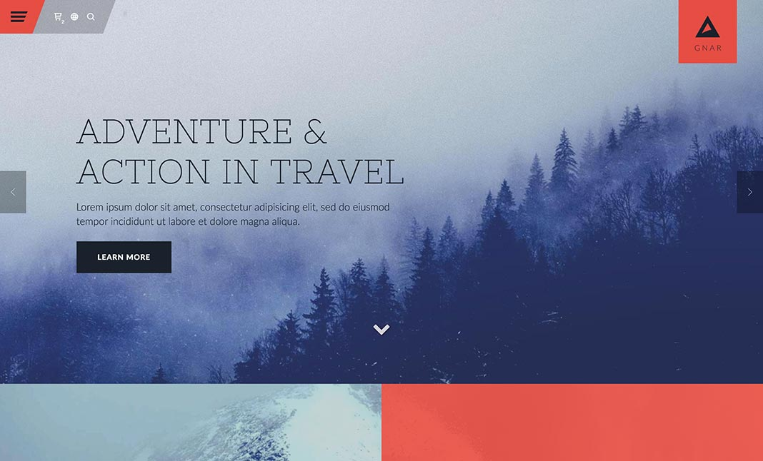Gnar WordPress Theme website