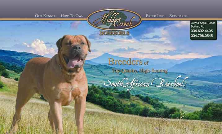 Hidden Creek Boerboels website
