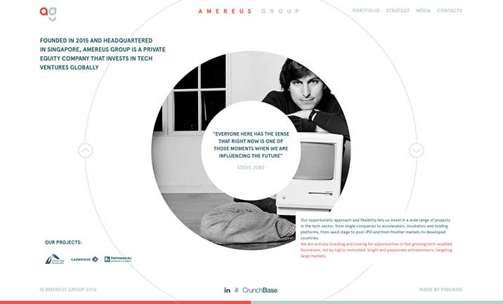 Amereus Group website