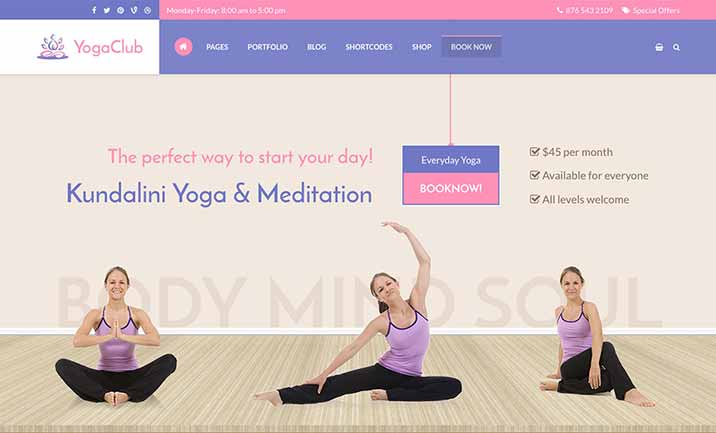 Yoga Club - WordPress Theme website