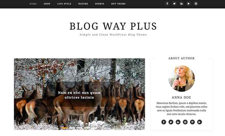 Blog Way Plus