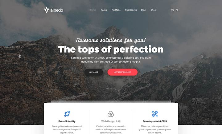 Albedo - WP Theme website