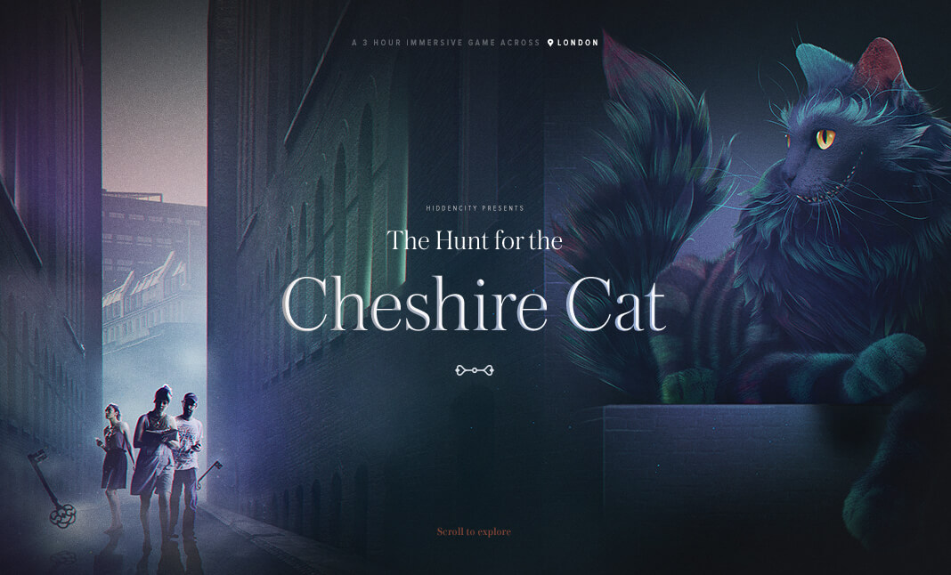 The Hunt for the Cheshire Cat  website