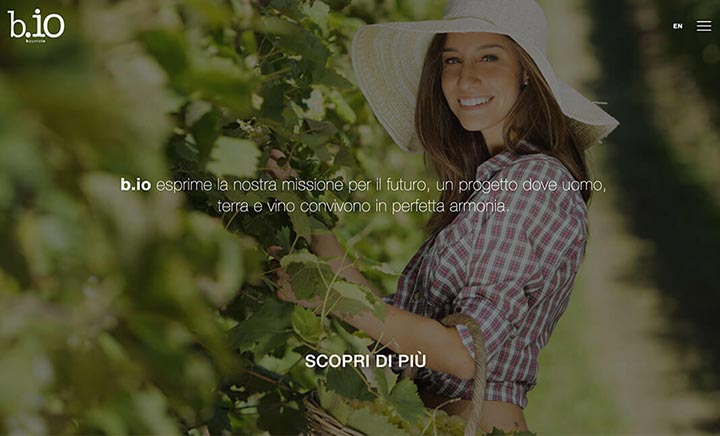 Bpuntoio website