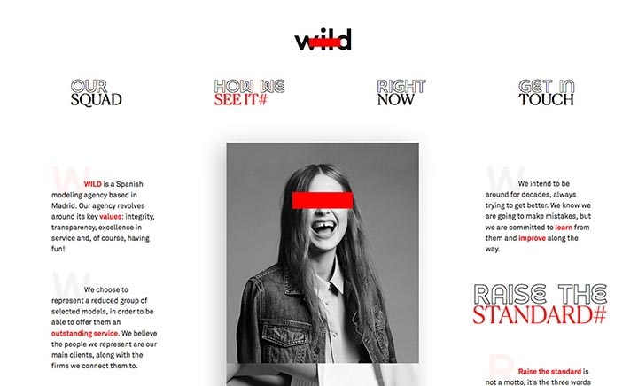 WILD MGMT website