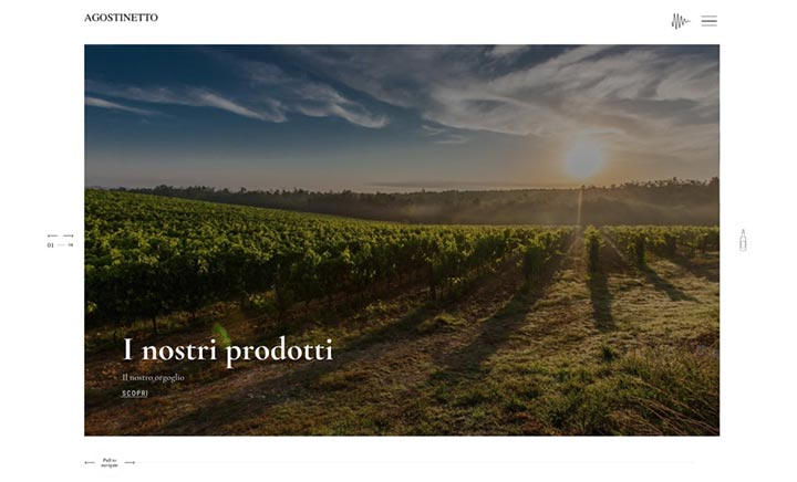 Agostinetto wine website