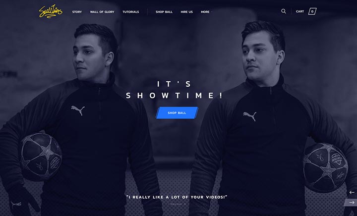 SkillTwins website