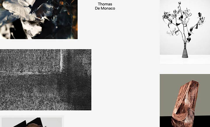 Thomas De Monaco website