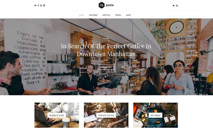Aspen - Wordpress Blog Theme website