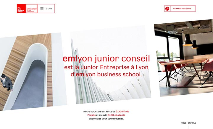 EM Lyon Junior Conseil website