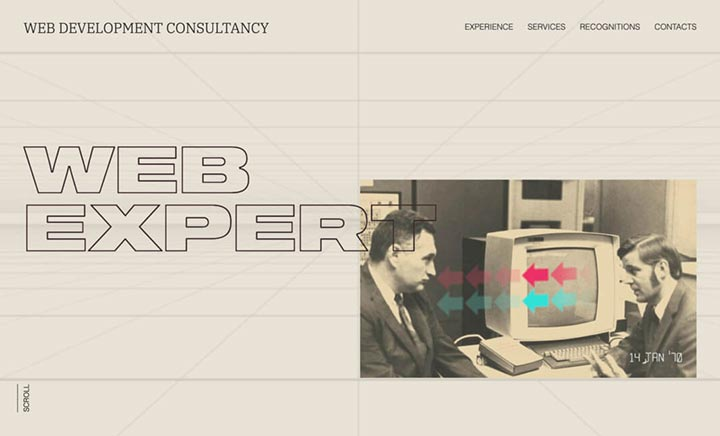 Web-Expert website