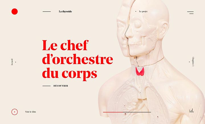 Le chef d'orchestre du corps website